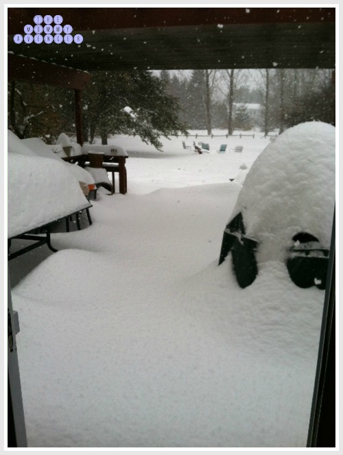 Snow-pacolypse