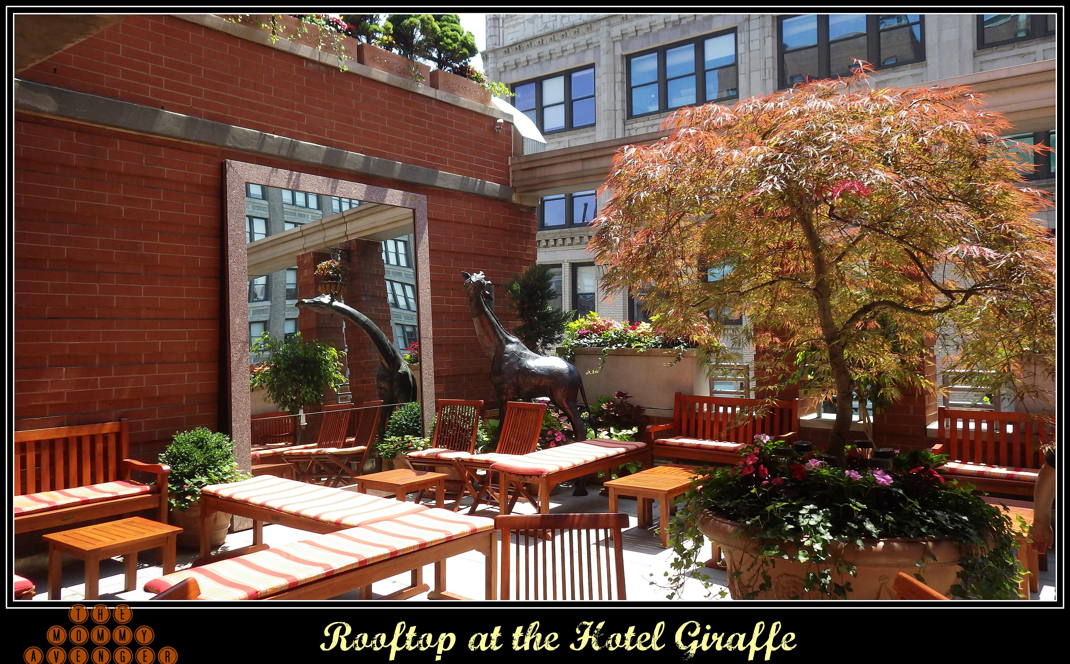 Hotel giraffe sex and the city