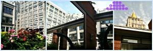 rooftopviews1