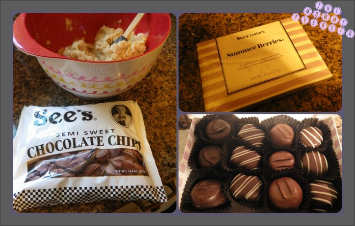 See's Candies Summer Berries and chocolate chips