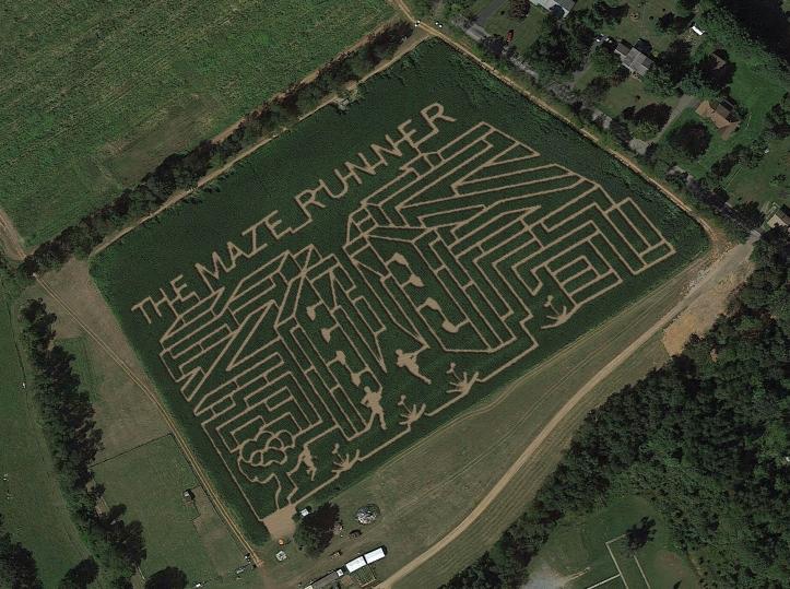 Aerial view of the corn maze at Horse Sleigh Farm