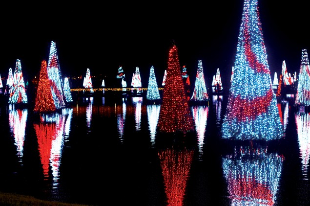 Hi Res SW_12_Christmas_7
