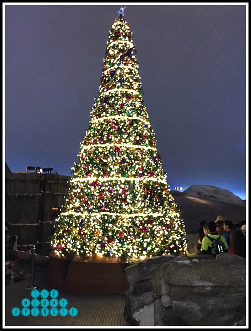 SeaWorld Polar Express Christmas Tree