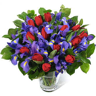 BQ-Tulips-Iris-BR