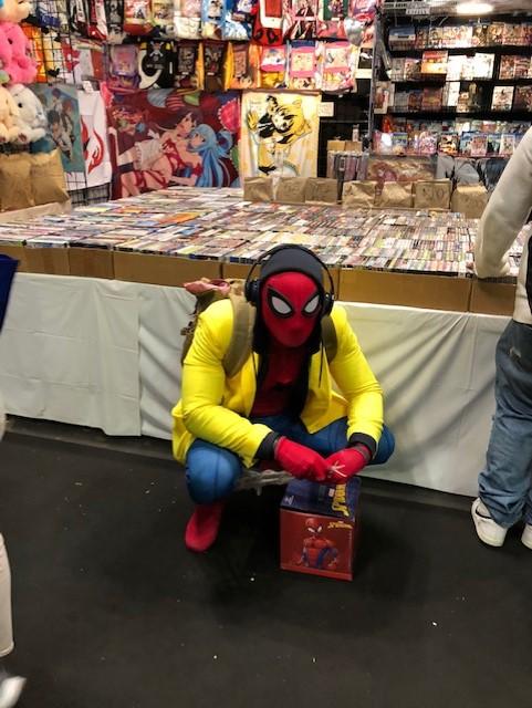 spiderman cc